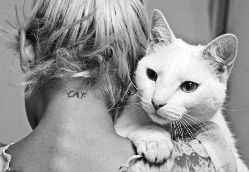 Фото кошек черно белое тату - 8