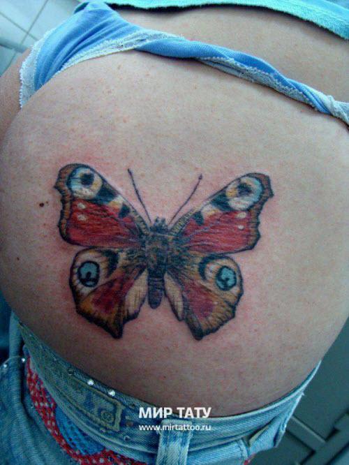 Фото тату бабочка на ягодицах - 8