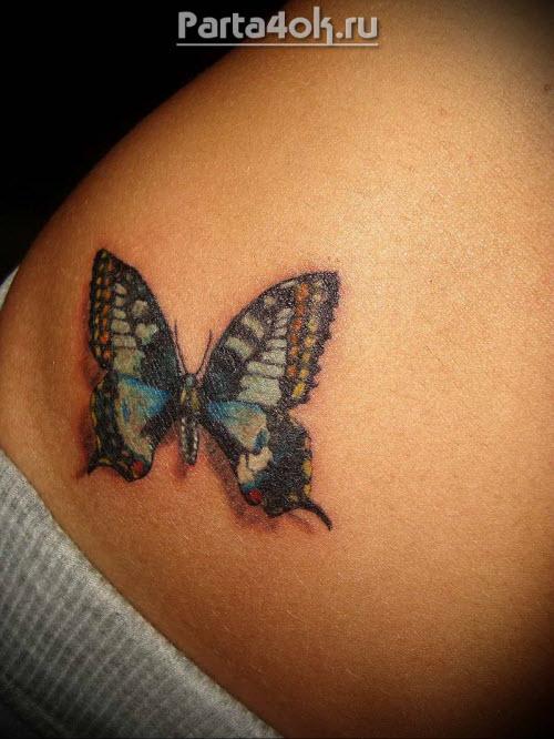 Фото тату бабочки на животе - 9