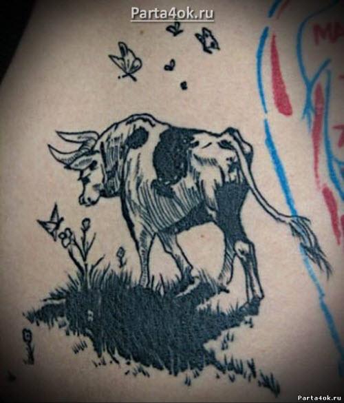 Фото тату быка на лопатке - 8