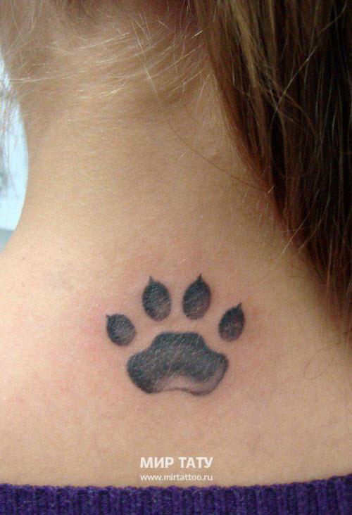 Фото тату кошачьи лапки на шее
