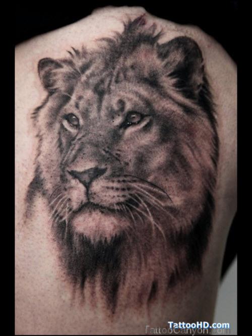Фото тату льва во всю спину - 3
