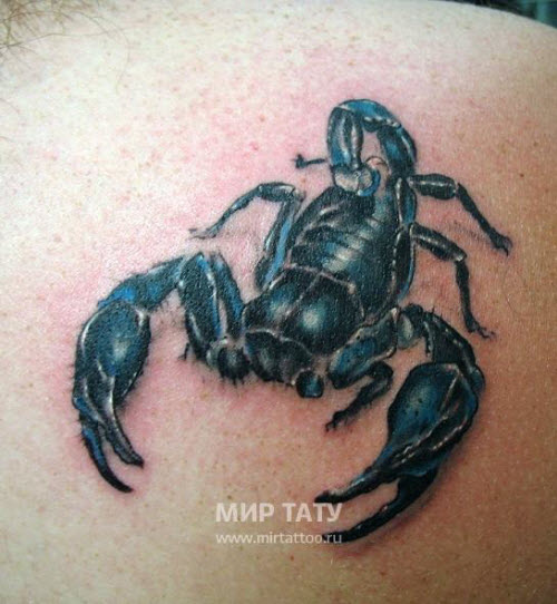 Фото тату на бедро скорпион