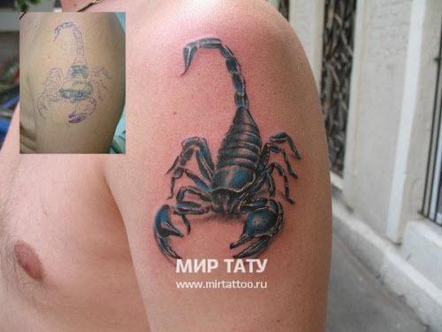 Фото тату на бедро скорпион - 2