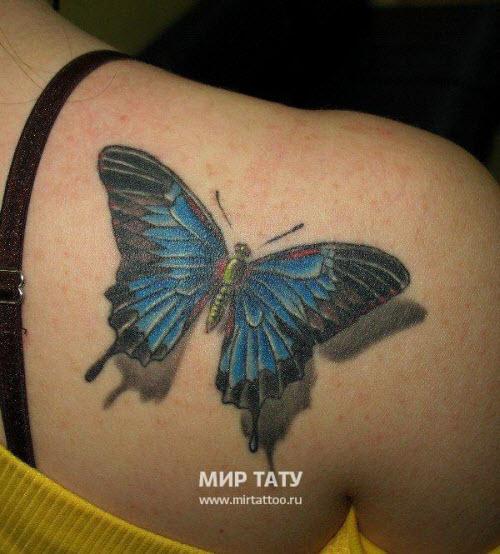 Фото тату на лопатке женские бабочки