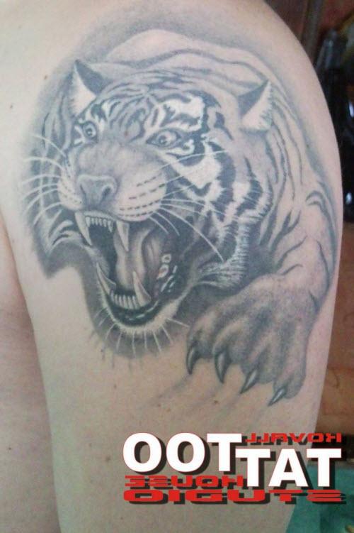 Фото тату пасть тигра - 4