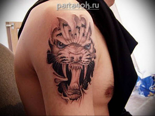 Фото тату пасть тигра - 8