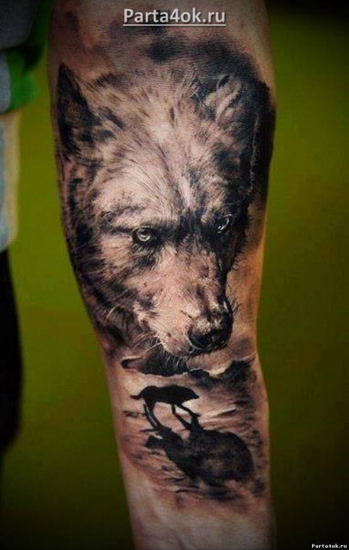 Фото волка в лесу для тату - 8