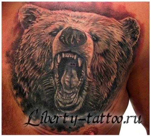 Медведь во всю спину тату фото - 6