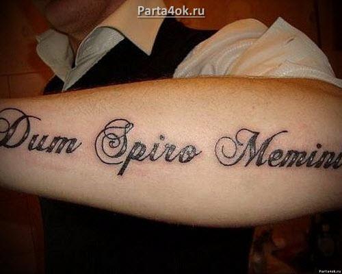 Тату фразы на латыни с переводом фото - 5