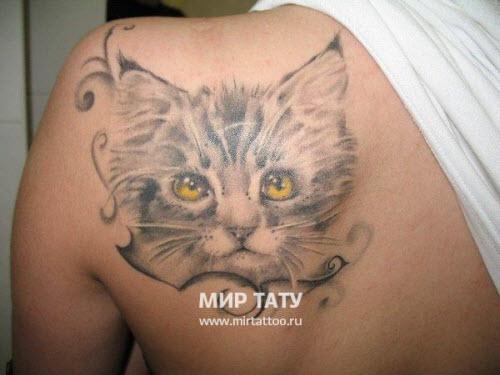 Тату кошки на лопатке фото - 8