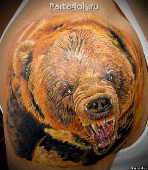Тату медведь цветное фото - 5