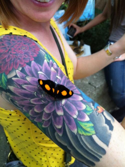 Тату с бабочками и цветами фото - 7