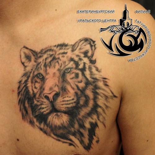 Тату тигр иероглиф фото - 7