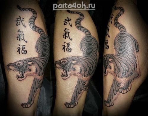 Тату тигр иероглиф фото - 9