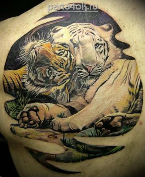 Тату тигр на пояснице фото - 5