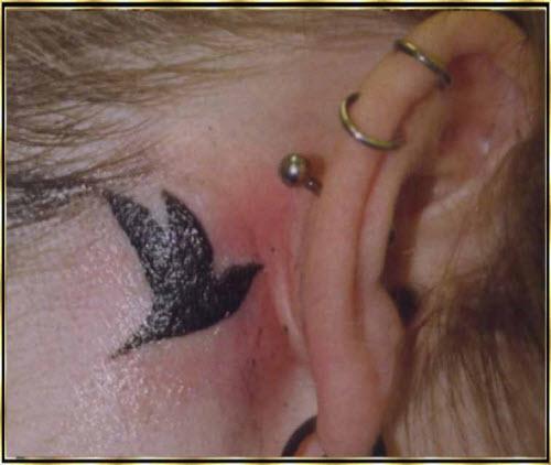 Тату за ухом птицы фото - 2